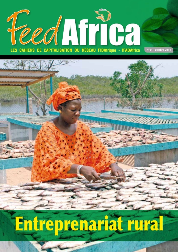 Feed AFRICA N°1 - Entreprenariat Rural