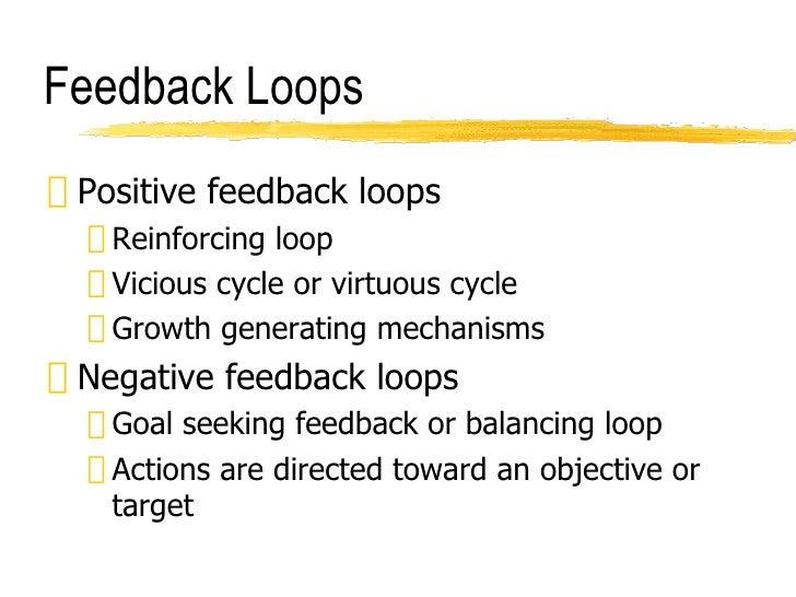Feedback Loops <ul><li>Positive feedback loops </li></ul><ul><ul><li>Reinforcing loop </li></ul></ul><ul><ul><li>Vicious c...
