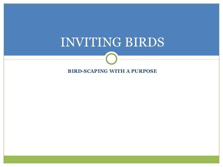 Inviting Birds