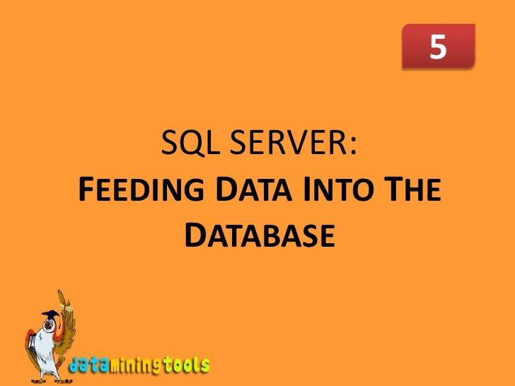 MS SQL SERVER: Feeding Data Into Database