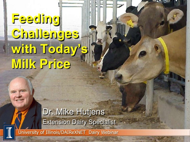 Feeding Challenges with Today's Milk Price               Dr. Mike Hutjens             Extension Dairy Specialist  Universi...