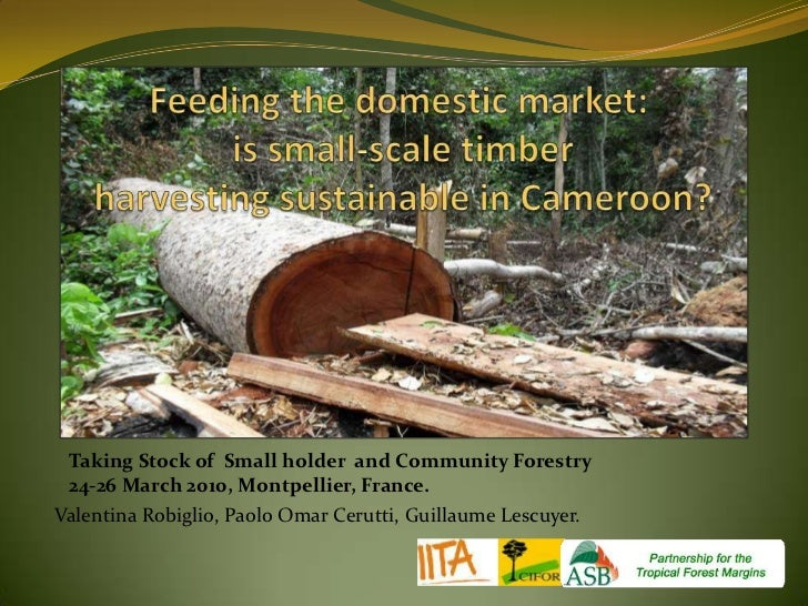 Feeding the domestic market: is small-scale timber harvesting sustainable in Cameroon?<br />Taking Stock of  Small holder ...