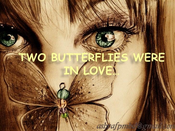 TWO BUTTERFLIES WERE IN LOVE…