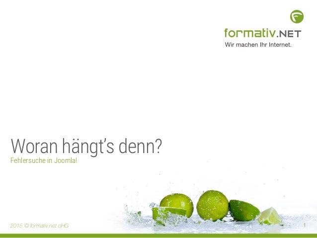 2015 © formativ.net oHG 1 Woran hängt's denn? Fehlersuche in Joomla!