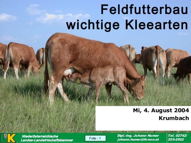 Feldfutterbau wichtige Kleearten  Mi, 4. August 2004 Krumbach Niederösterreichische Landes-Landwirtschaftskammer version 2...