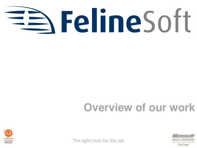 FelineSoft work