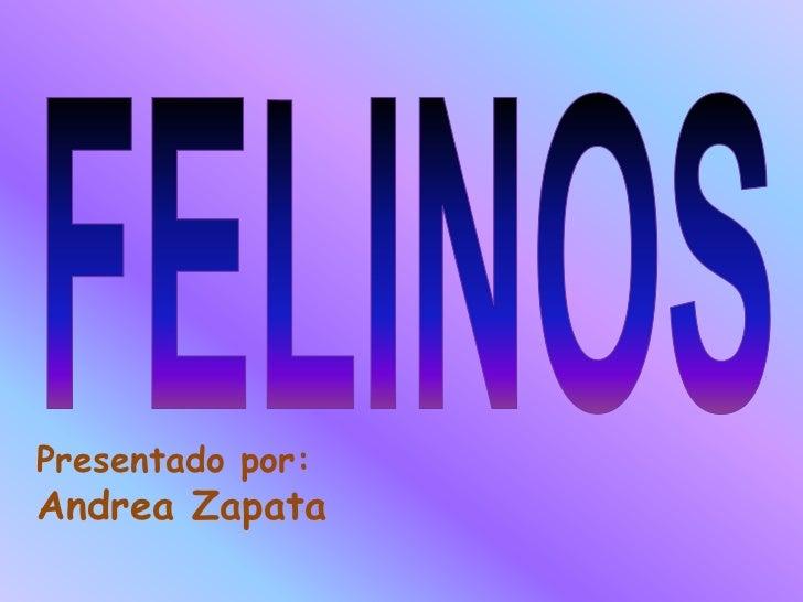 Presentado por:Andrea Zapata