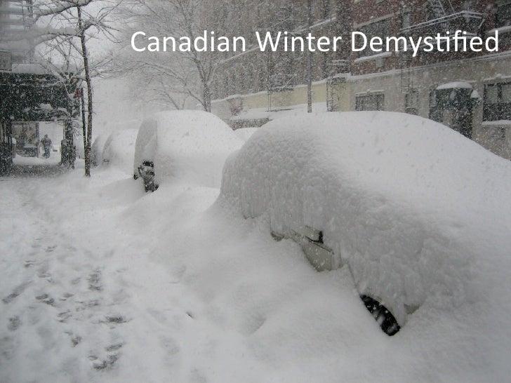 CanadianWinterDemys/fied