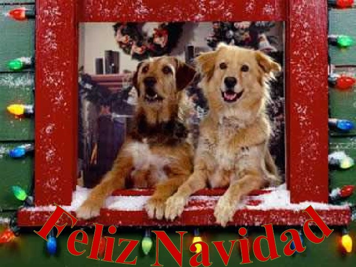 Feliz Navidad - 2008