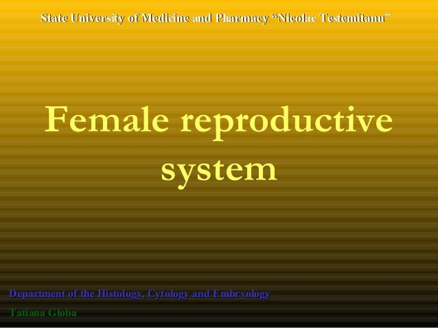 Female reproductive system Department of the Histology, Cytology and EmbryologyDepartment of the Histology, Cytology and E...