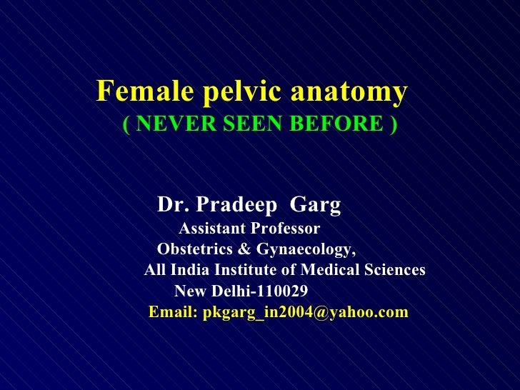 Female pelvic anatomy  ( NEVER SEEN BEFORE ) Dr. Pradeep  Garg   Assistant Professor   Obstetrics & Gynaecology, All India...