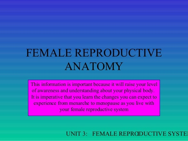 FEMALE REPRODUCTIVE ANATOMY This information is important because it will raise your level of awareness and understanding ...