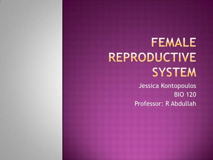 Female Reproductive System<br />Jessica Kontopoulos<br />BIO 120<br />Professor: R Abdullah<br />