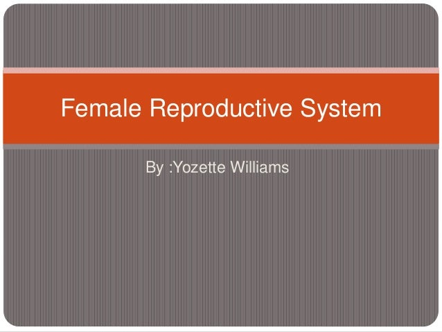 By :Yozette Williams Female Reproductive System