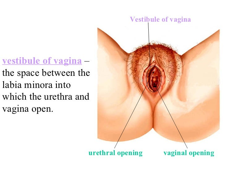 vagina pain and right swollen wall