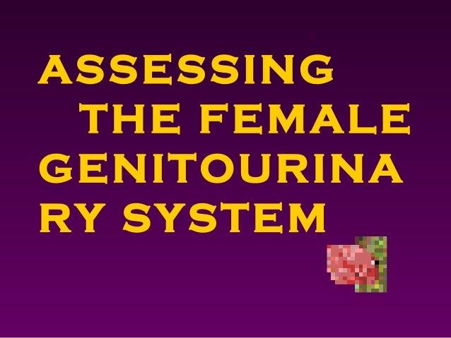 ASSESSINGTHE FEMALEGENITOURINARY SYSTEM