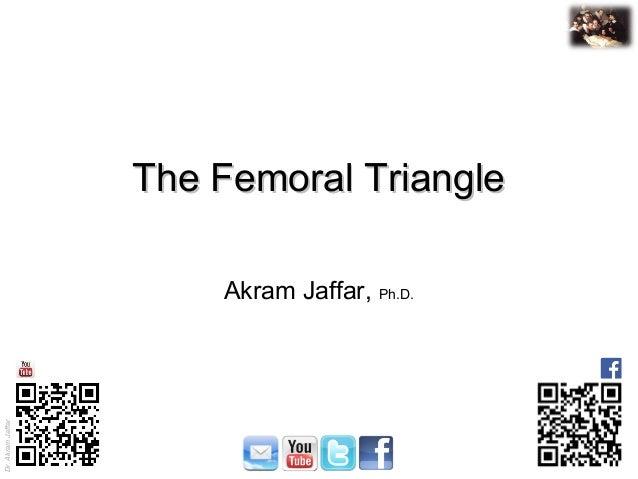 Dr. Akram Jaffar Dr.AkramJaffar The Femoral TriangleThe Femoral Triangle Akram Jaffar, Ph.D.