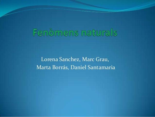 Lorena Sanchez, Marc Grau, Marta Borrás, Daniel Santamaria