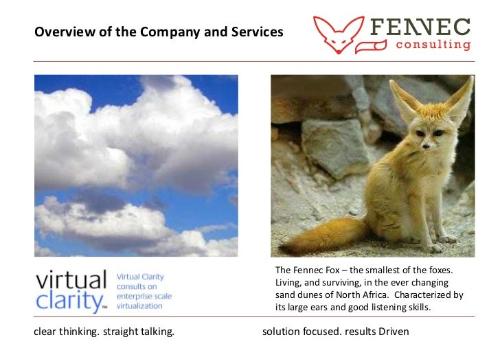 Overview of the Company and Services<br />The Fennec Fox – the smallest of the foxes. Living, and surviving, in the ever c...