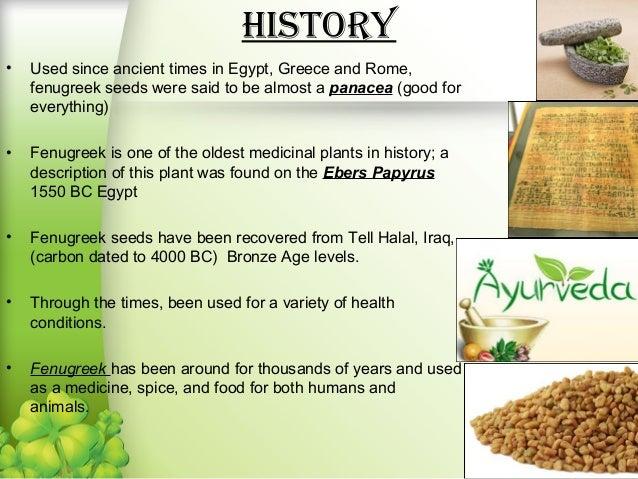 http://image.slidesharecdn.com/fenugreek-140223114554-phpapp02/95/fenugreek-seeds-cultivation-and-gum-production-4-638.jpg?cb=1393177658