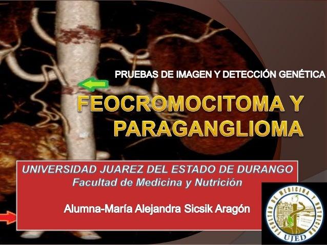 Pheochromocytoma: diagnostic and therapeutic update, AMELIA OLEAGA a, FERNANDO GOÑI a Servicio de Endocrinología. Hospital...