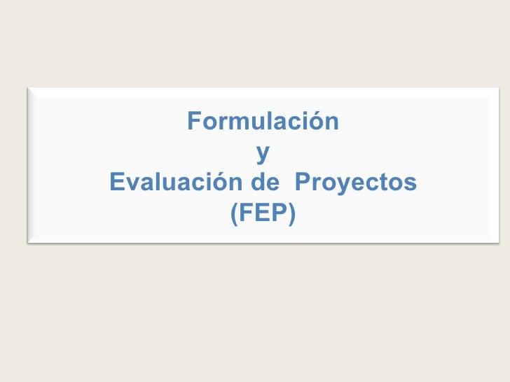 Formulación y Evaluación de  Proyectos (FEP)