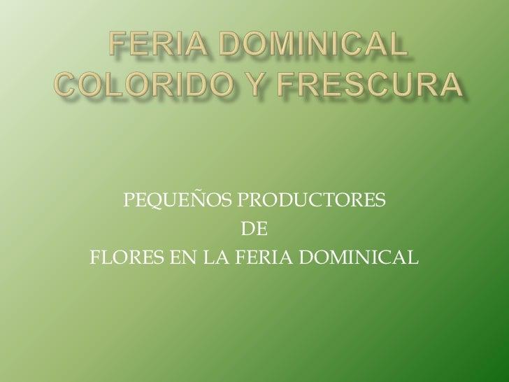 FERIA DOMINICALCOLORIDO Y FRESCURA<br />PEQUEÑOS PRODUCTORES<br />DE<br />FLORES EN LA FERIA DOMINICAL<br />