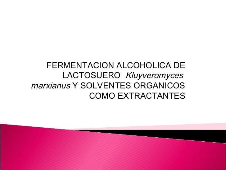 FERMENTACION ALCOHOLICA DE       LACTOSUERO Kluyveromycesmarxianus Y SOLVENTES ORGANICOS             COMO EXTRACTANTES