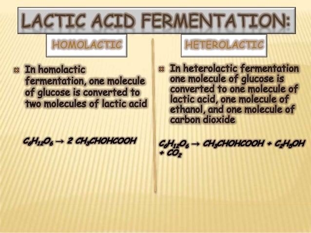 Fermentation presentation