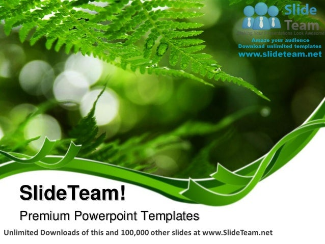 Fern frond frame nature power point templates themes and backgrounds ppt designs