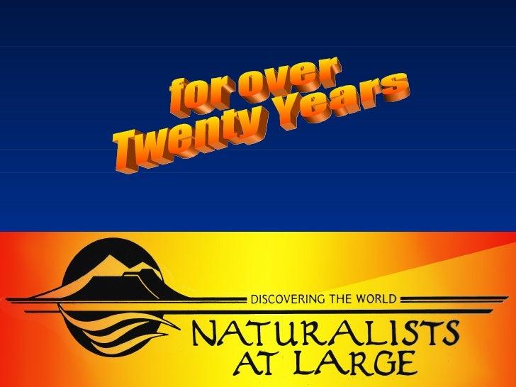 Big Sur / Fernwood - Naturalists at Large