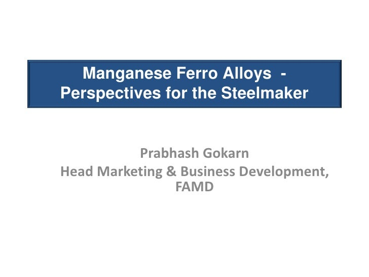 Ferro Alloy Perspectives for the Steelmaker