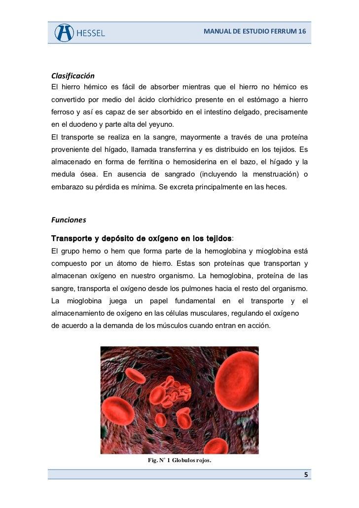 diflucan drug interactions