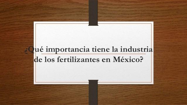 ¿Qué importancia tiene la industria de los fertilizantes en México?