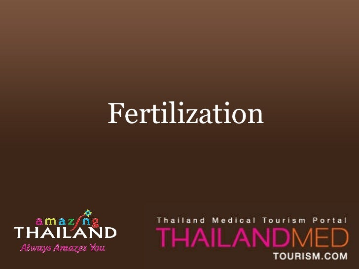 Thailand Medical Tourism_Fertilization