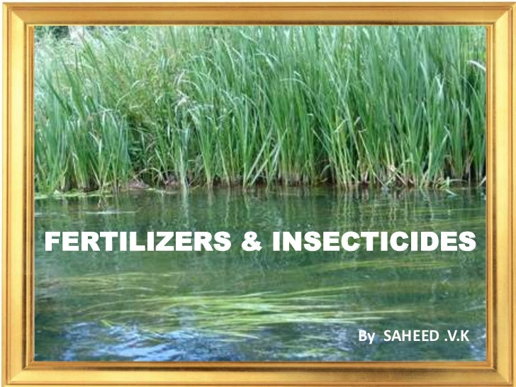 FERTILIZERS & INSECTICIDES                  By SAHEED .V.K