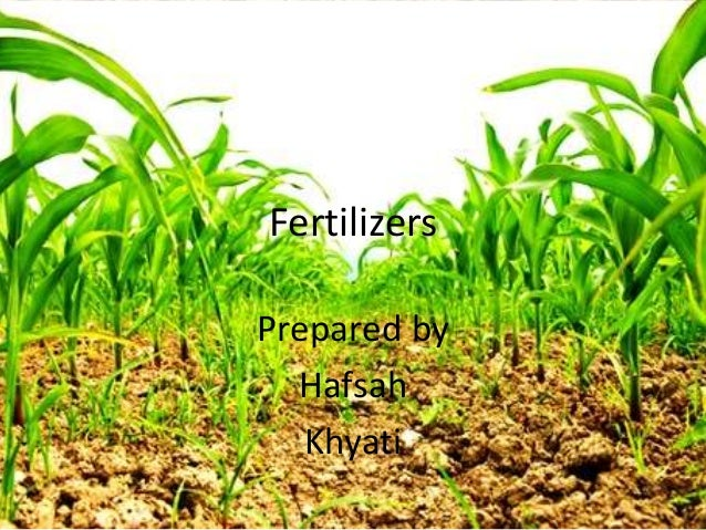 Fertilizers- the Chemistry behind it