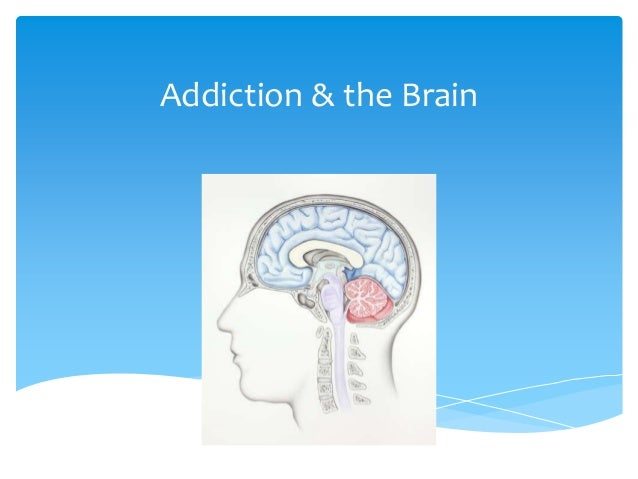 Addiction & the Brain