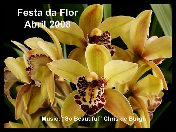 "Music: ""So Beautiful"" Chris de Burgh"