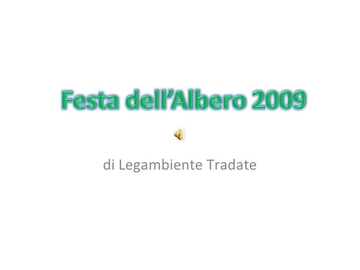 Festa Albero 2009