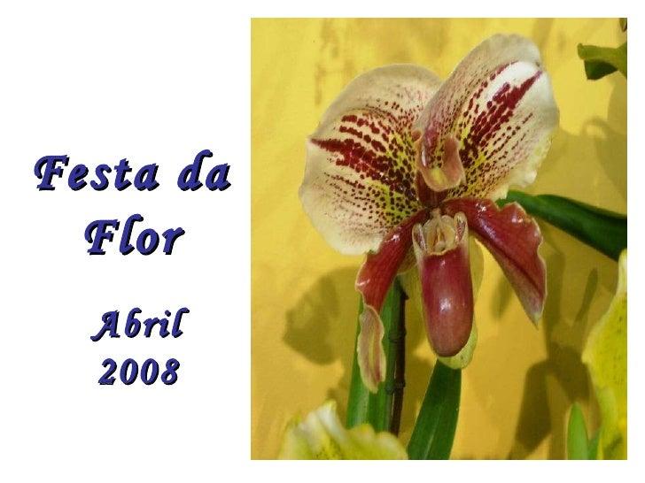 Festadaflor2008 1223414546836351 9