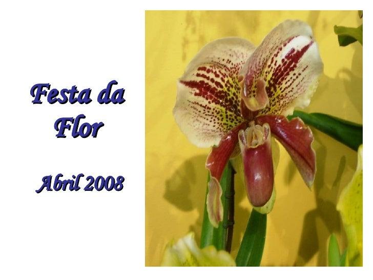 Festa da Flor Abril 2008