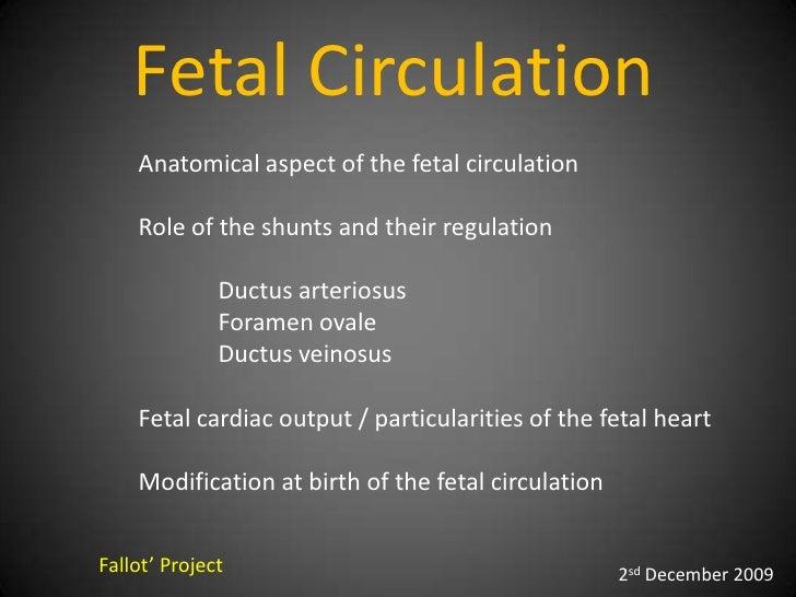 Fetal Circulation    Anatomical aspect of the fetal circulation    Role of the shunts and their regulation              Du...