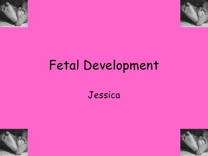 Fetal development powerpoint 2