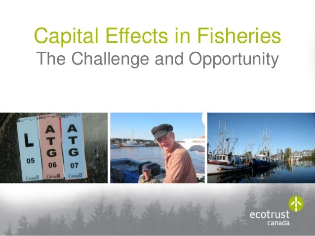 Capital Effects in Fisheries The Challenge and Opportunity