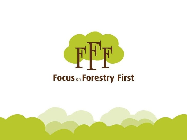 Focus On Forestry Your Questions Answered