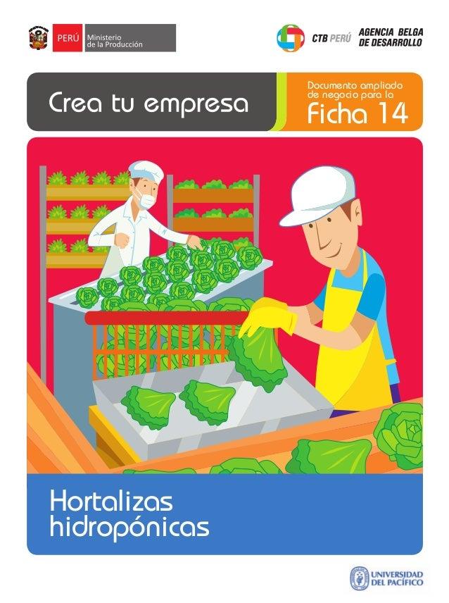 Documento ampliado de negocio para la  Ficha 14  Hortalizas hidropónicas