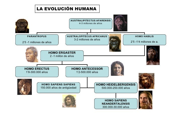 Evolucin Del Hombre 14185498 further Mercedes Araoz likewise 593 as well Changing Places Fernando Gaston Antonio Rodriguez Marco Antonio Gonzalez further Evolucin Humana 9340059. on oscar raposo linkedin