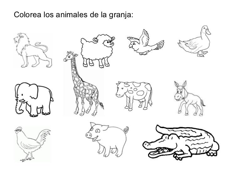 Fichas con animales
