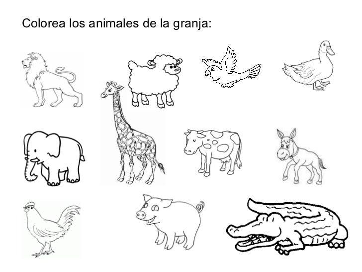 Asombroso Colorear En Hojas Animales Componente - Páginas Para ...